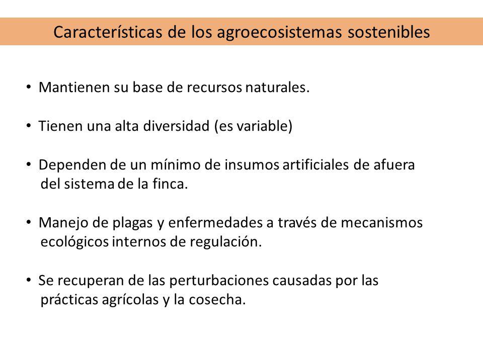 Características de los agroecosistemas sostenibles