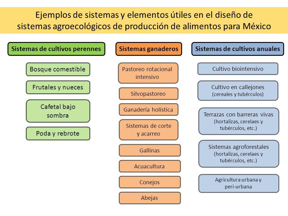 Ejemplos de sistemas y elementos útiles en el diseño de