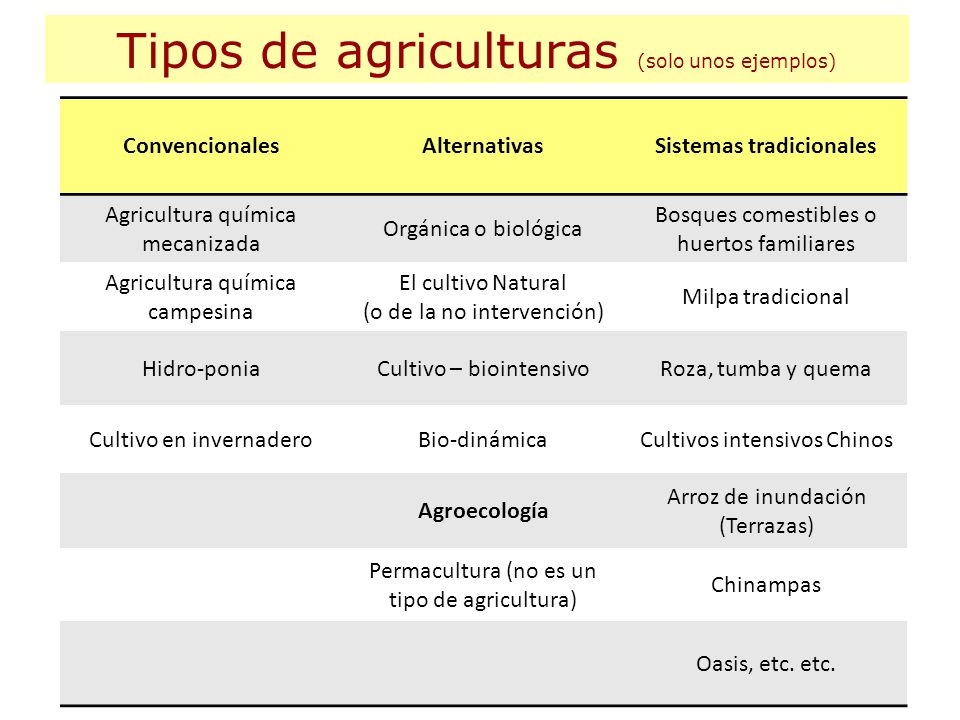 Sistemas tradicionales