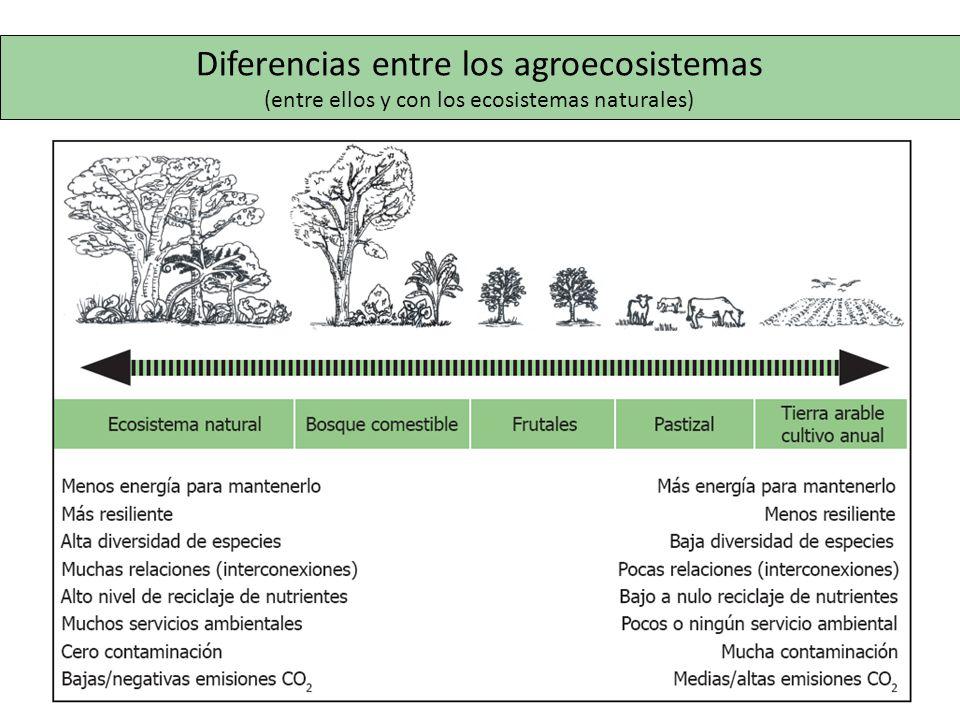 Diferencias entre los agroecosistemas