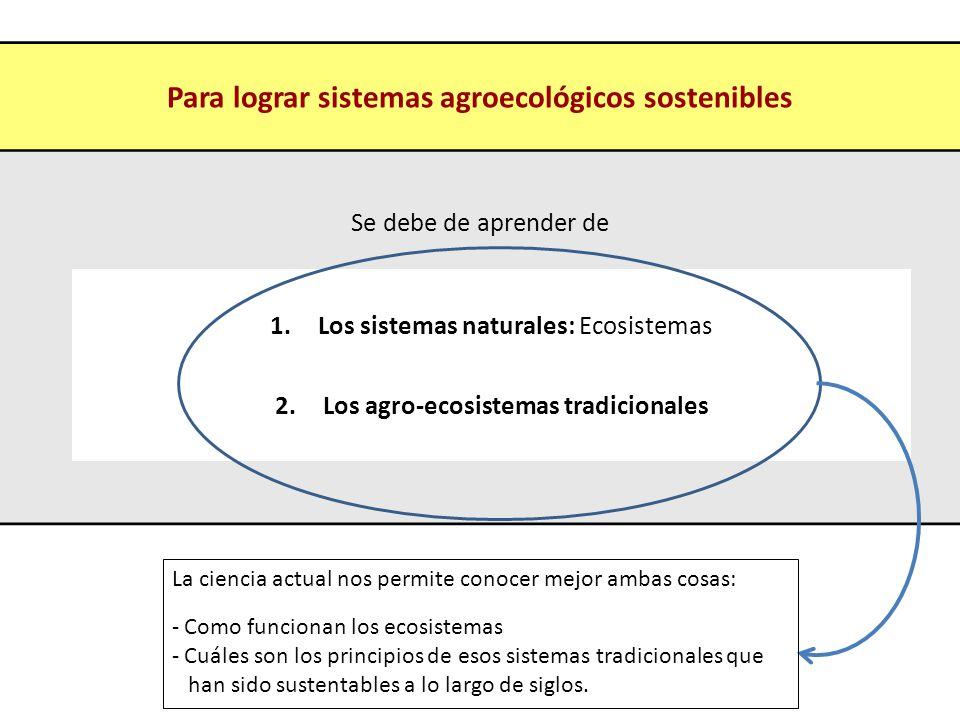 Para lograr sistemas agroecológicos sostenibles