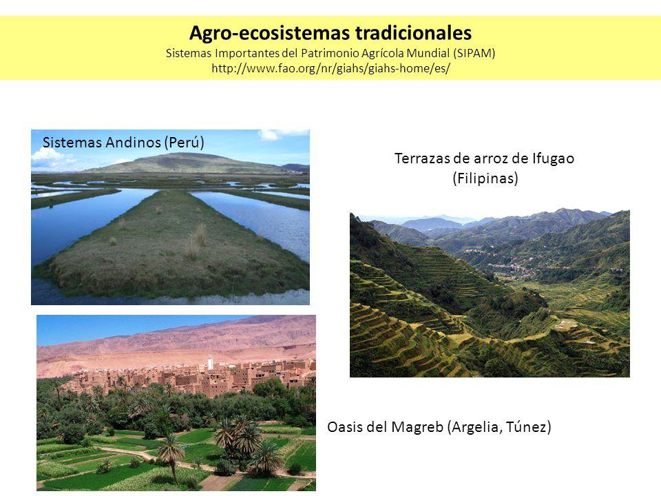 Agro-ecosistemas tradicionales