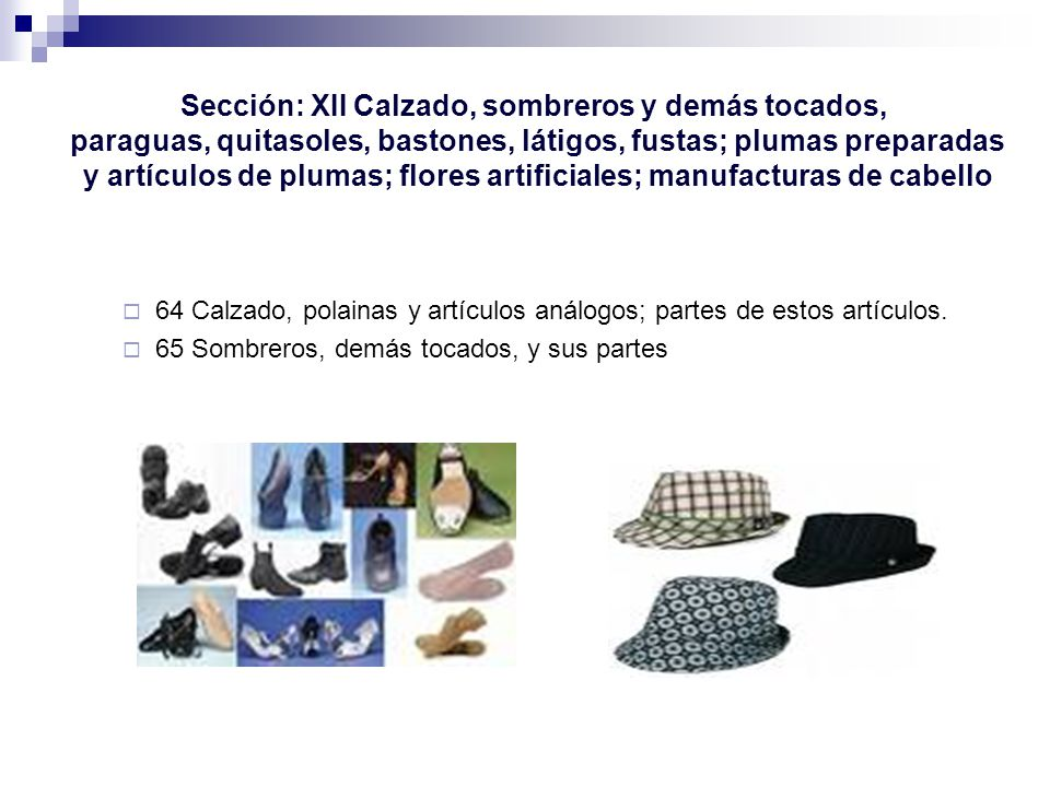 Sección: XII Calzado, sombreros y demás tocados,