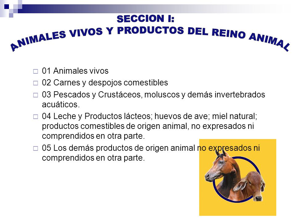 ANIMALES VIVOS Y PRODUCTOS DEL REINO ANIMAL