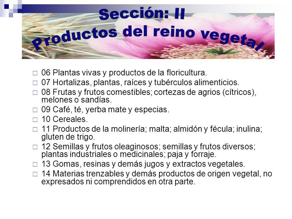 Productos del reino vegetal