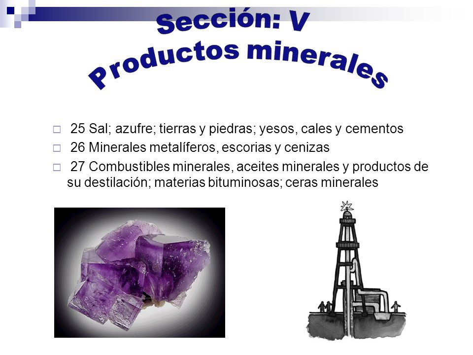 Sección: V Productos minerales