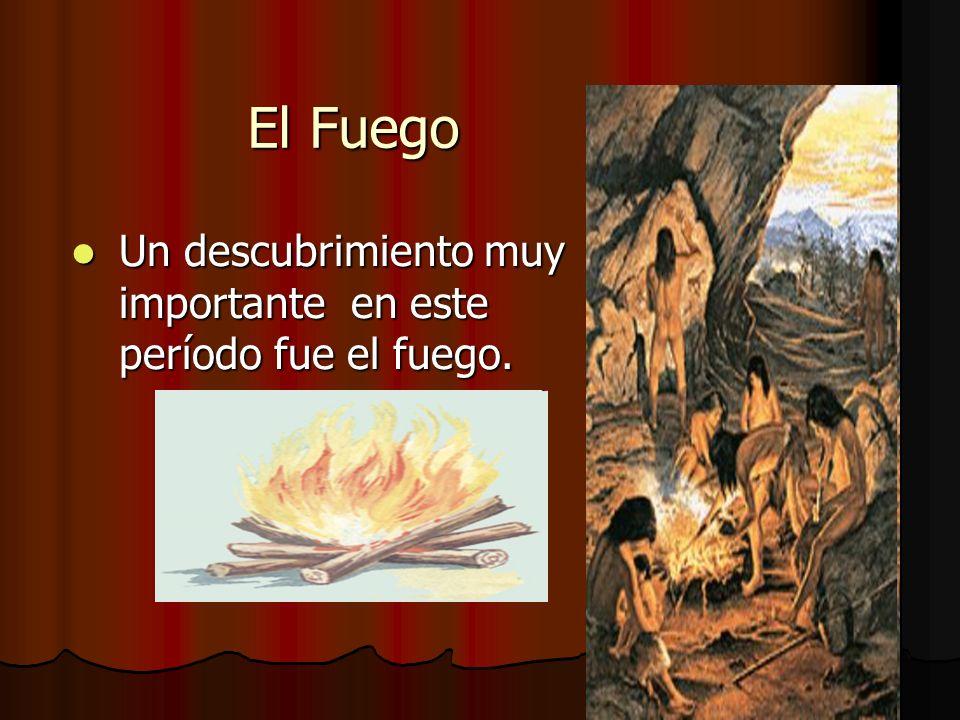 El Fuego Un descubrimiento muy importante en este período fue el fuego.