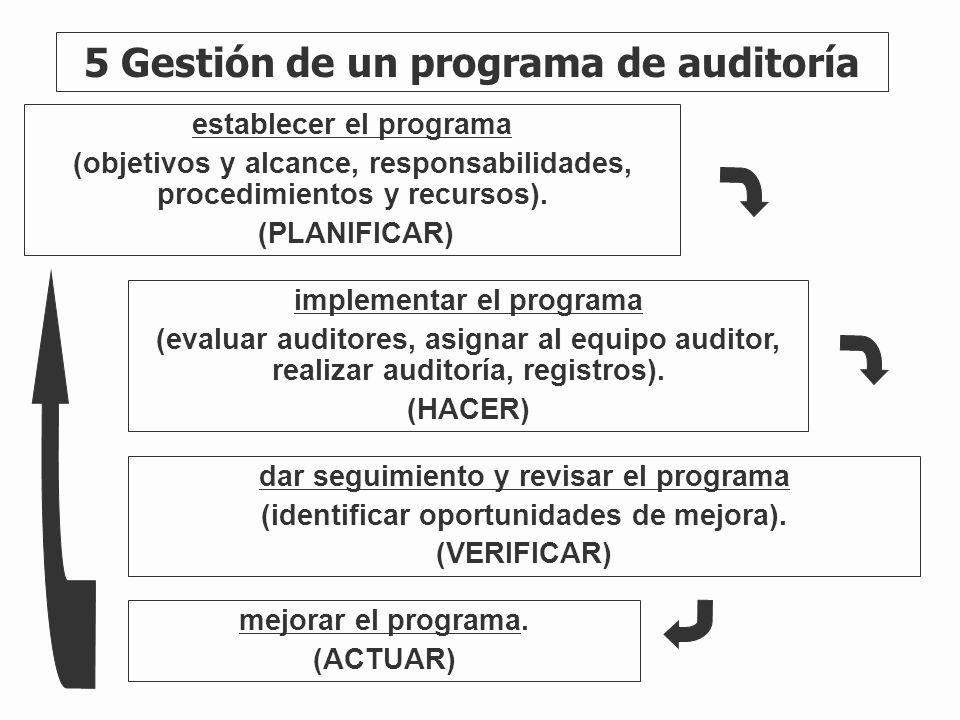 5 Gestión de un programa de auditoría
