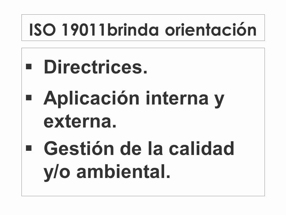 ISO 19011brinda orientación