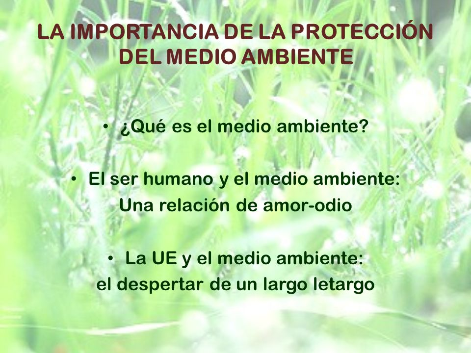 LA IMPORTANCIA DE LA PROTECCIÓN DEL MEDIO AMBIENTE