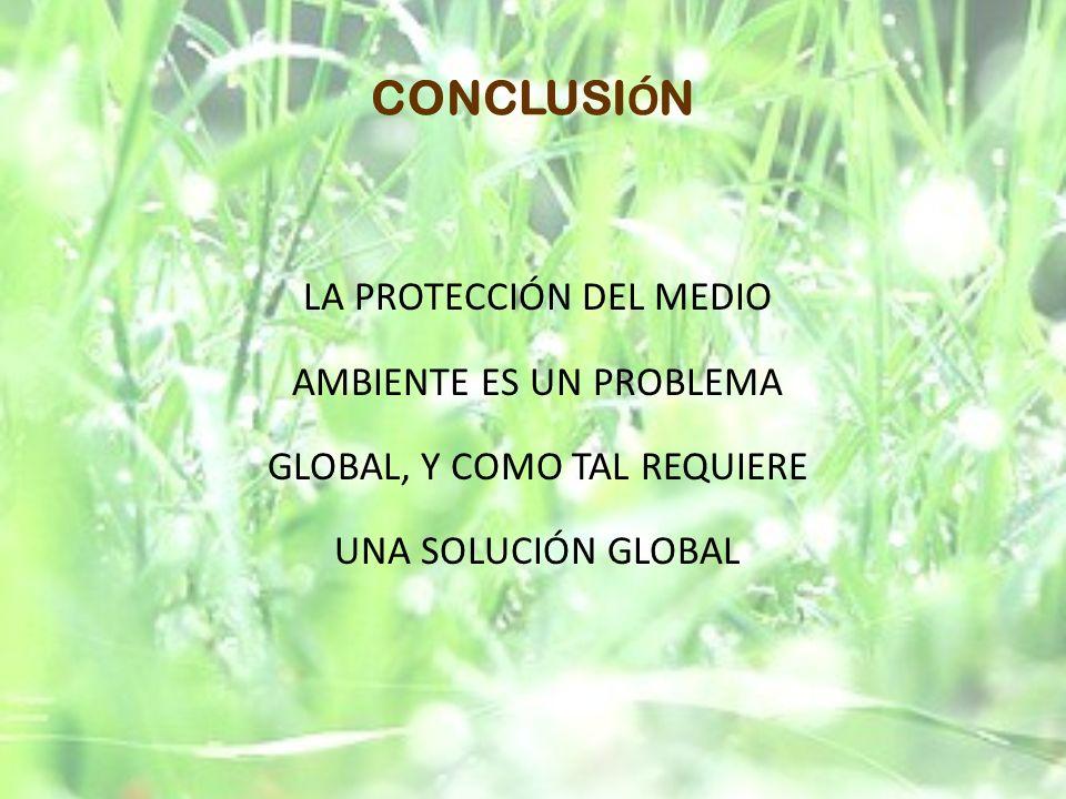 CONCLUSIÓN LA PROTECCIÓN DEL MEDIO AMBIENTE ES UN PROBLEMA