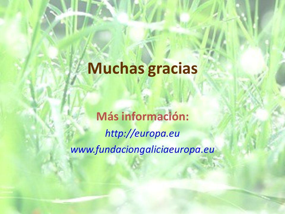 Más información: http://europa.eu www.fundaciongaliciaeuropa.eu