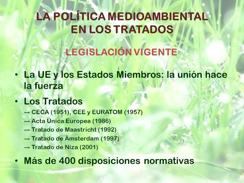 LA POLÍTICA MEDIOAMBIENTAL EN LOS TRATADOS