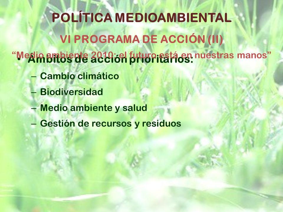 POLÍTICA MEDIOAMBIENTAL VI PROGRAMA DE ACCIÓN (II)