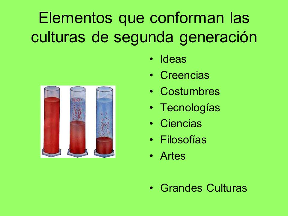 Elementos que conforman las culturas de segunda generación