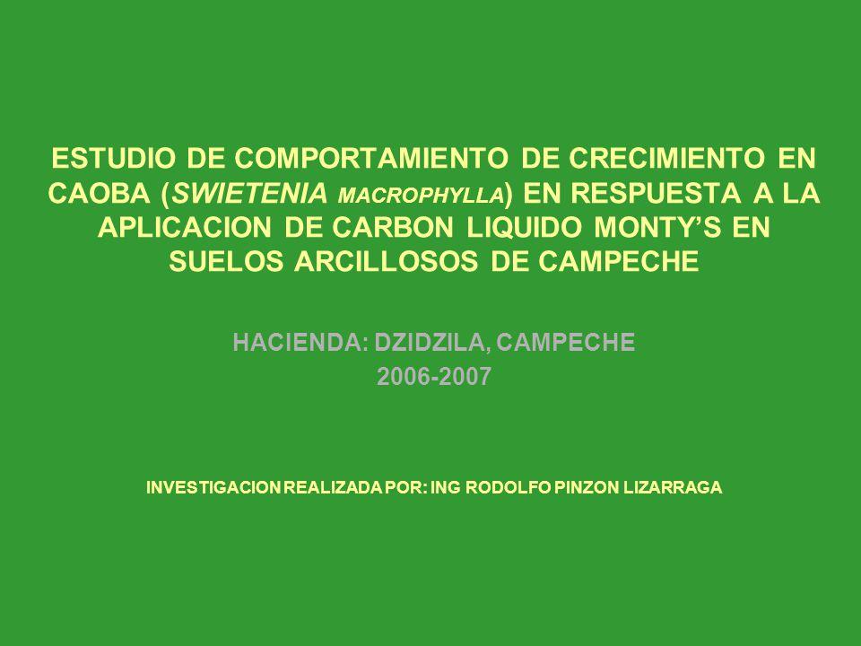 ESTUDIO DE COMPORTAMIENTO DE CRECIMIENTO EN CAOBA (SWIETENIA MACROPHYLLA) EN RESPUESTA A LA APLICACION DE CARBON LIQUIDO MONTY'S EN SUELOS ARCILLOSOS DE CAMPECHE