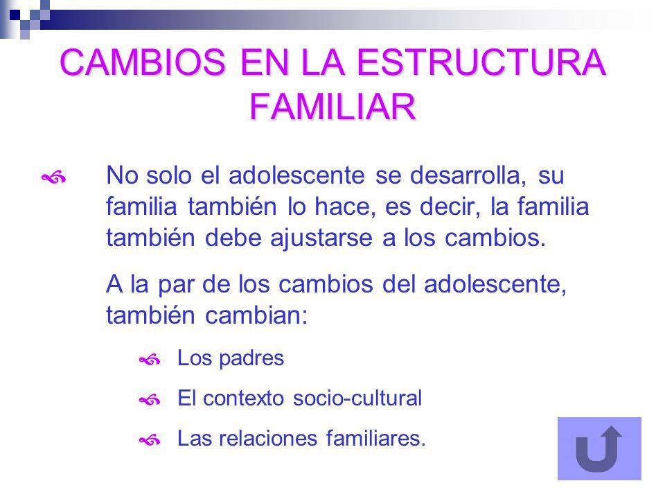 CAMBIOS EN LA ESTRUCTURA FAMILIAR