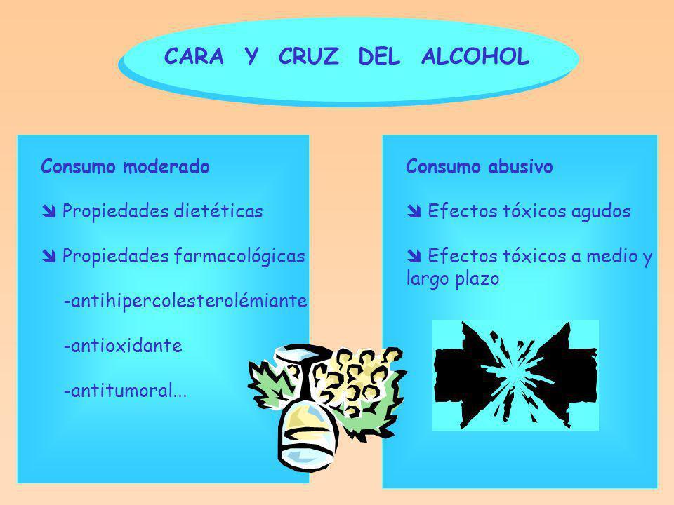 CARA Y CRUZ DEL ALCOHOL Consumo moderado  Propiedades dietéticas