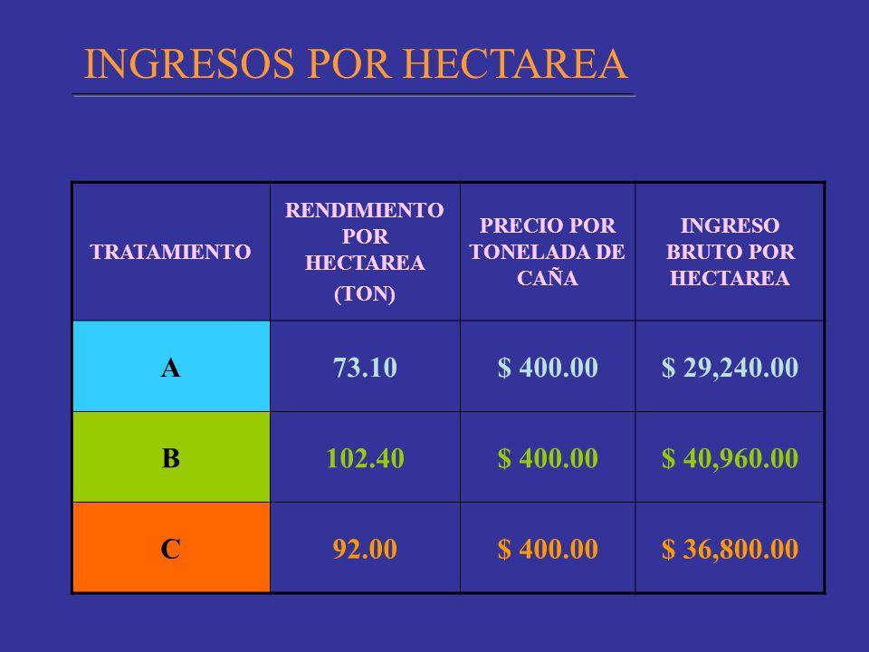 INGRESOS POR HECTAREA A 73.10 $ 400.00 $ 29,240.00 B 102.40