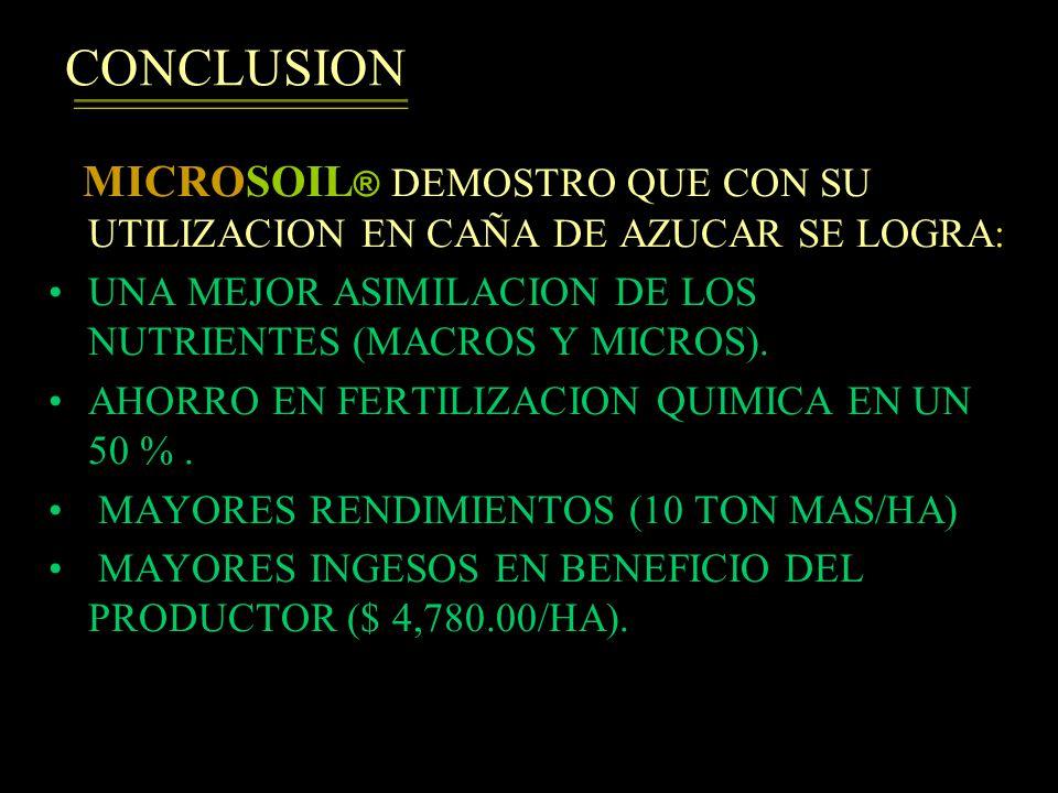 CONCLUSION MICROSOIL® DEMOSTRO QUE CON SU UTILIZACION EN CAÑA DE AZUCAR SE LOGRA: UNA MEJOR ASIMILACION DE LOS NUTRIENTES (MACROS Y MICROS).