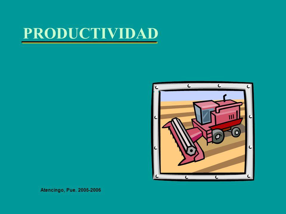 PRODUCTIVIDAD Atencingo, Pue. 2005-2006