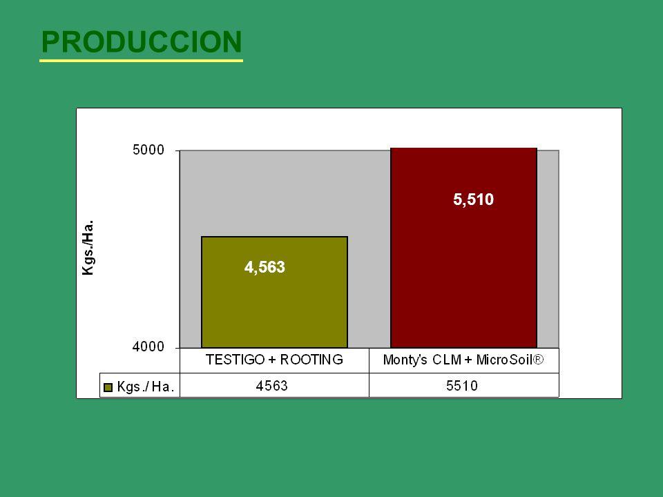 PRODUCCION 5,510 4,563