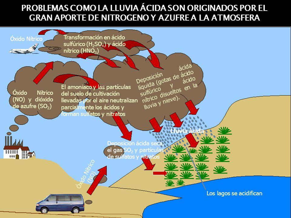 PROBLEMAS COMO LA LLUVIA ÁCIDA SON ORIGINADOS POR EL GRAN APORTE DE NITROGENO Y AZUFRE A LA ATMOSFERA
