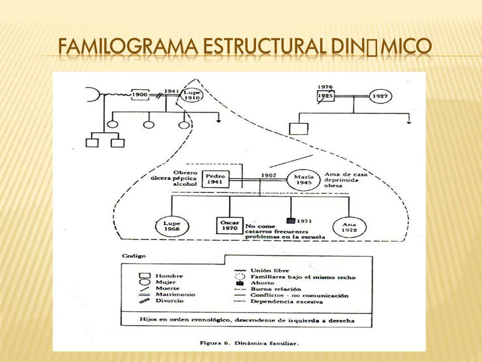 Familograma estructural dinámico