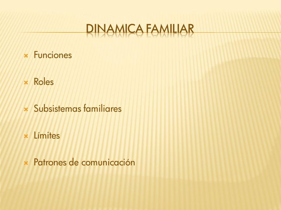 Dinamica familiar Funciones Roles Subsistemas familiares Límites
