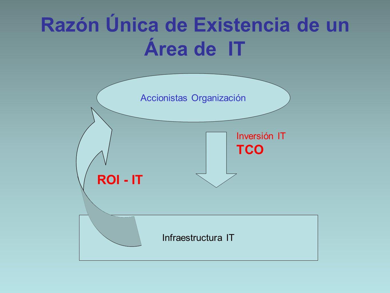 Razón Única de Existencia de un Área de IT