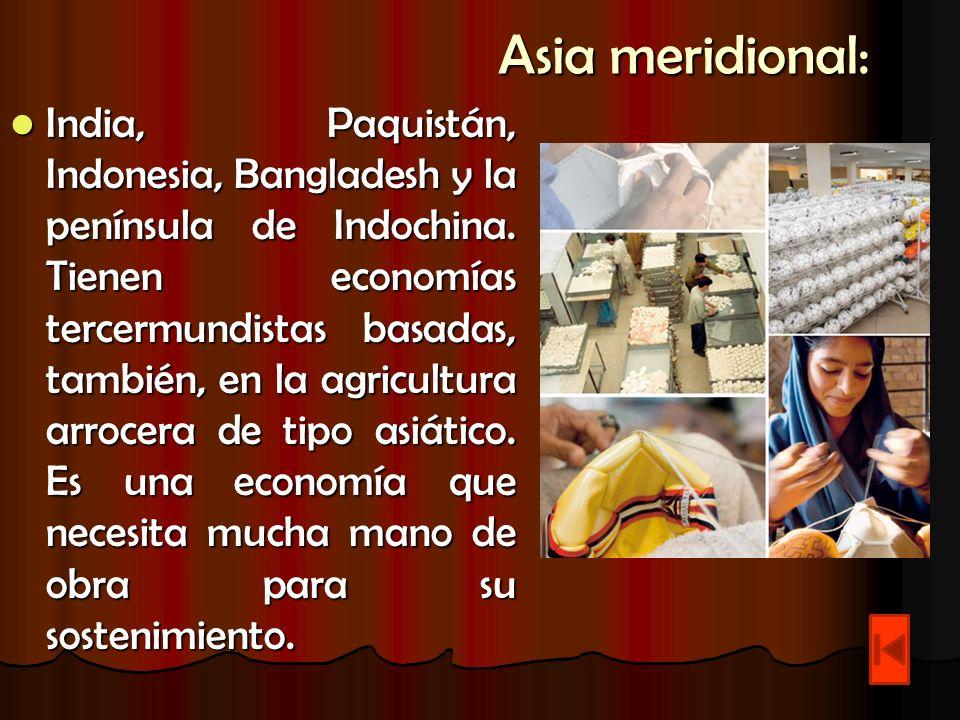 Asia meridional: