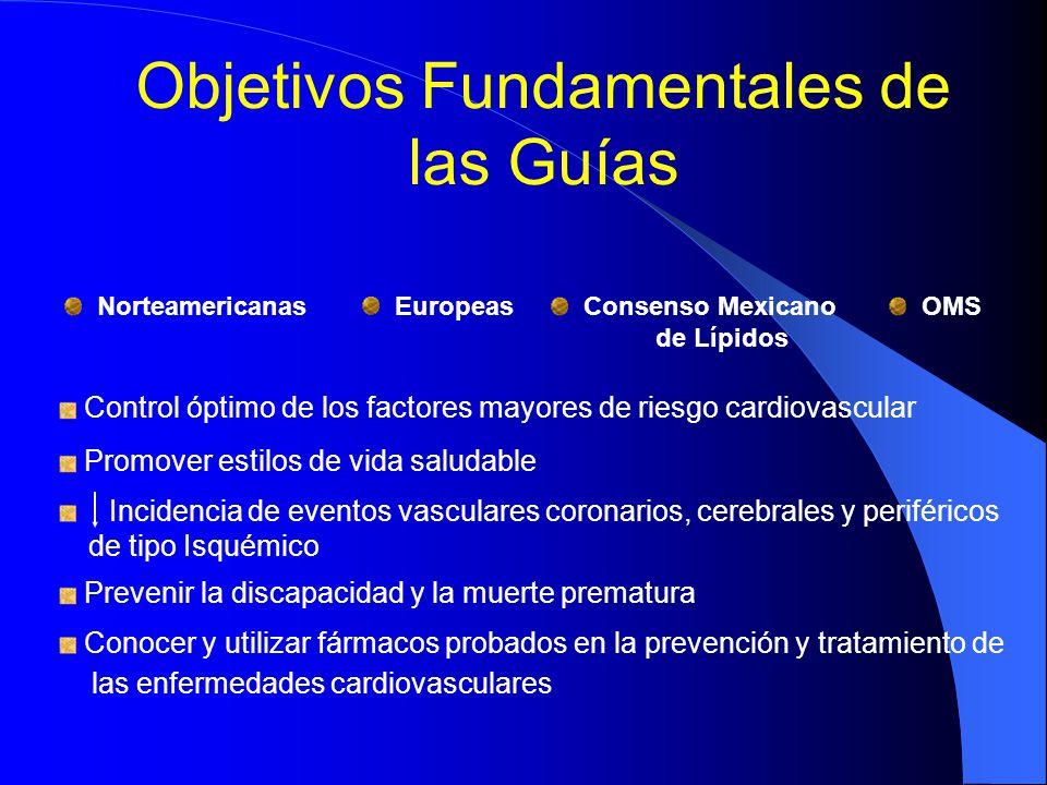 Objetivos Fundamentales de las Guías