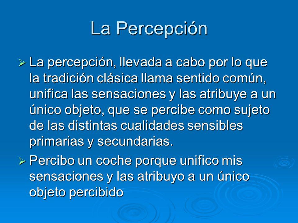 La Percepción