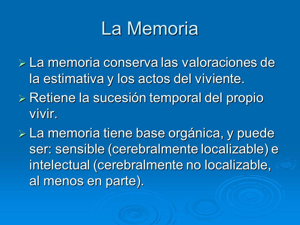 La Memoria La memoria conserva las valoraciones de la estimativa y los actos del viviente. Retiene la sucesión temporal del propio vivir.