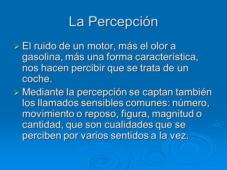La Percepción El ruido de un motor, más el olor a gasolina, más una forma característica, nos hacen percibir que se trata de un coche.