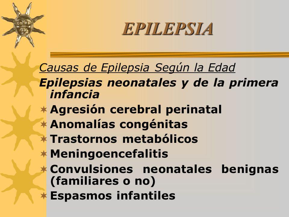 EPILEPSIA Causas de Epilepsia Según la Edad