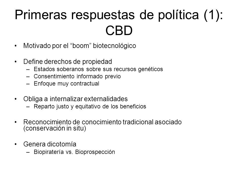 Primeras respuestas de política (1): CBD