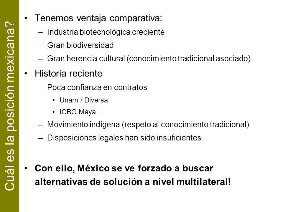 Cuál es la posición mexicana