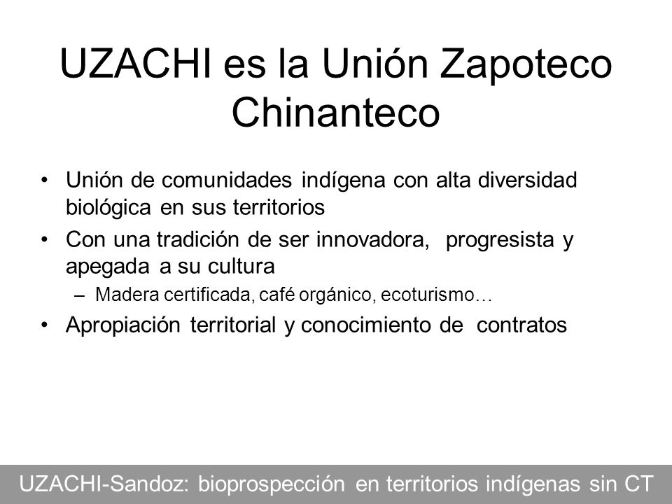 UZACHI es la Unión Zapoteco Chinanteco