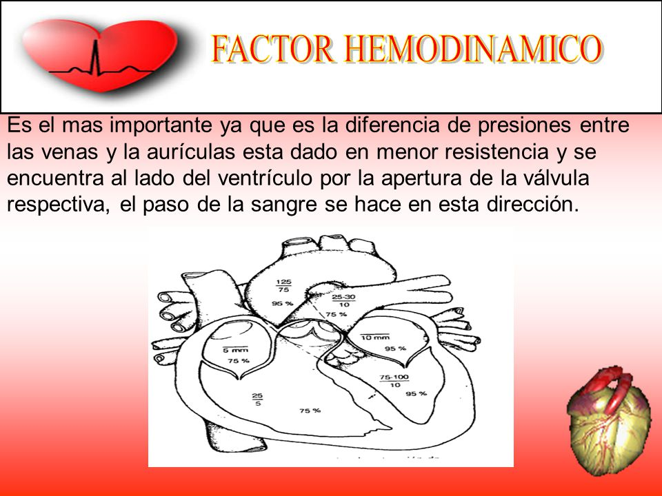 FACTOR HEMODINAMICO