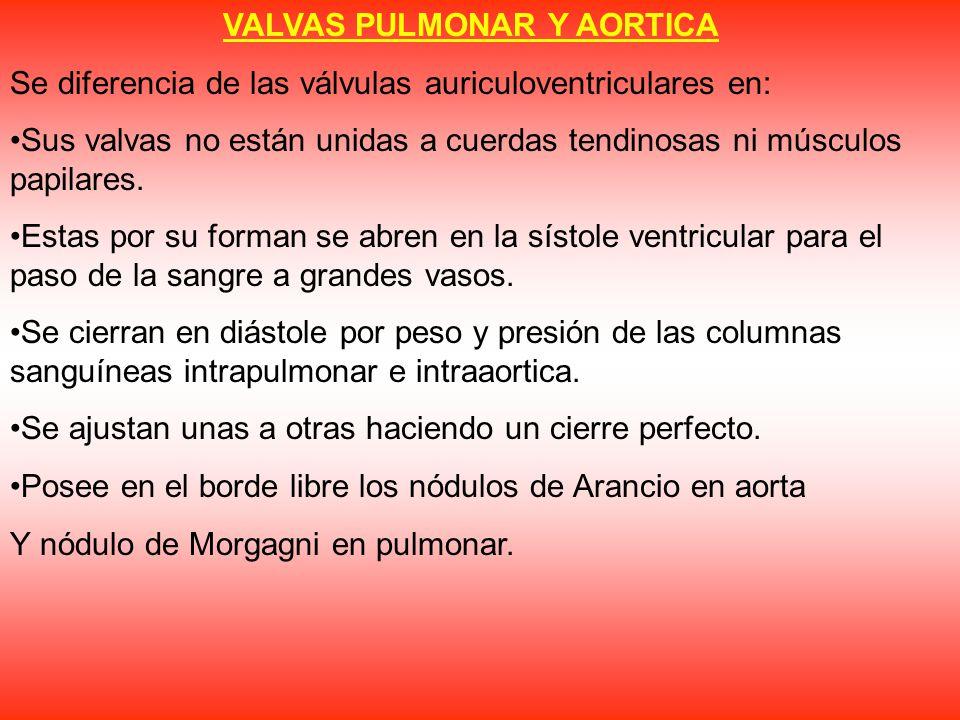 VALVAS PULMONAR Y AORTICA
