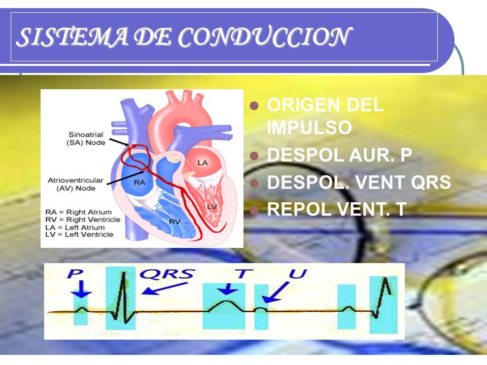 SISTEMA DE CONDUCCION ORIGEN DEL IMPULSO DESPOL AUR. P