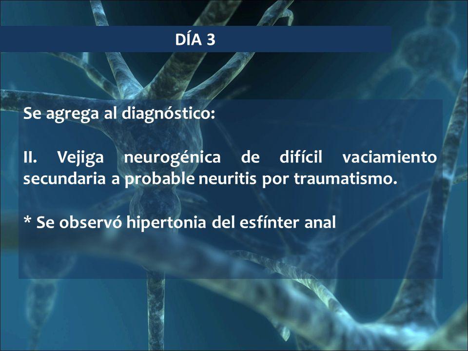 DÍA 3 Se agrega al diagnóstico: II. Vejiga neurogénica de difícil vaciamiento secundaria a probable neuritis por traumatismo.