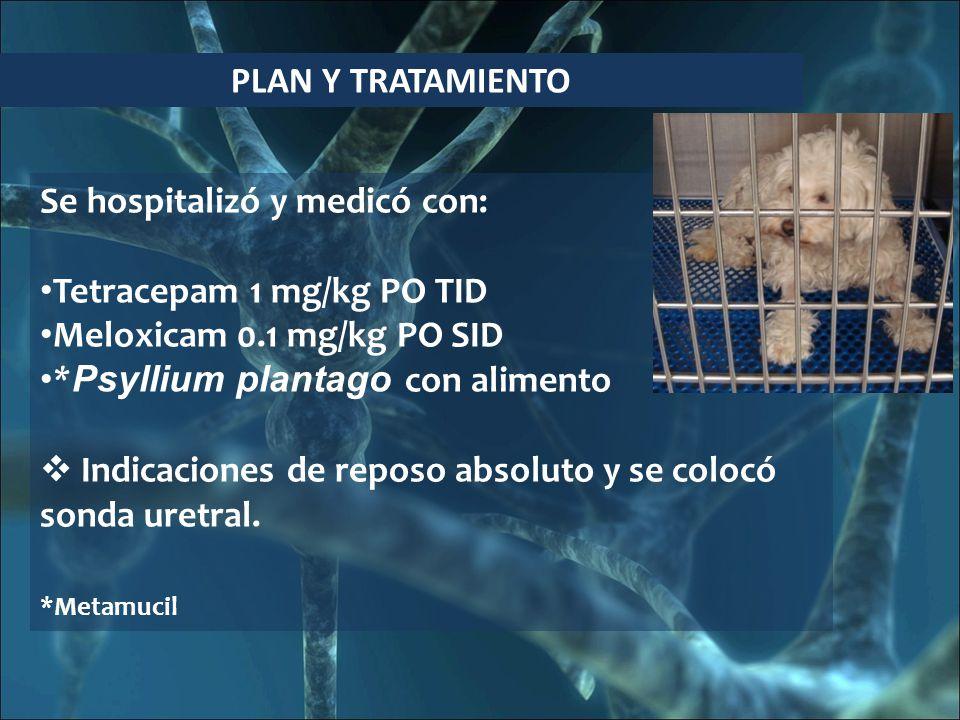 Se hospitalizó y medicó con: Tetracepam 1 mg/kg PO TID