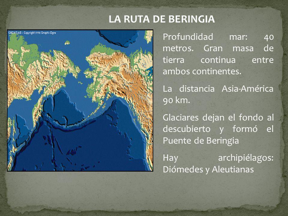 LA RUTA DE BERINGIA Profundidad mar: 40 metros. Gran masa de tierra continua entre ambos continentes.
