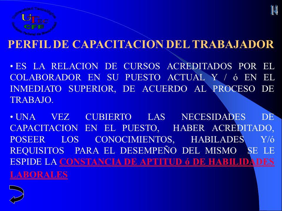 PERFIL DE CAPACITACION DEL TRABAJADOR