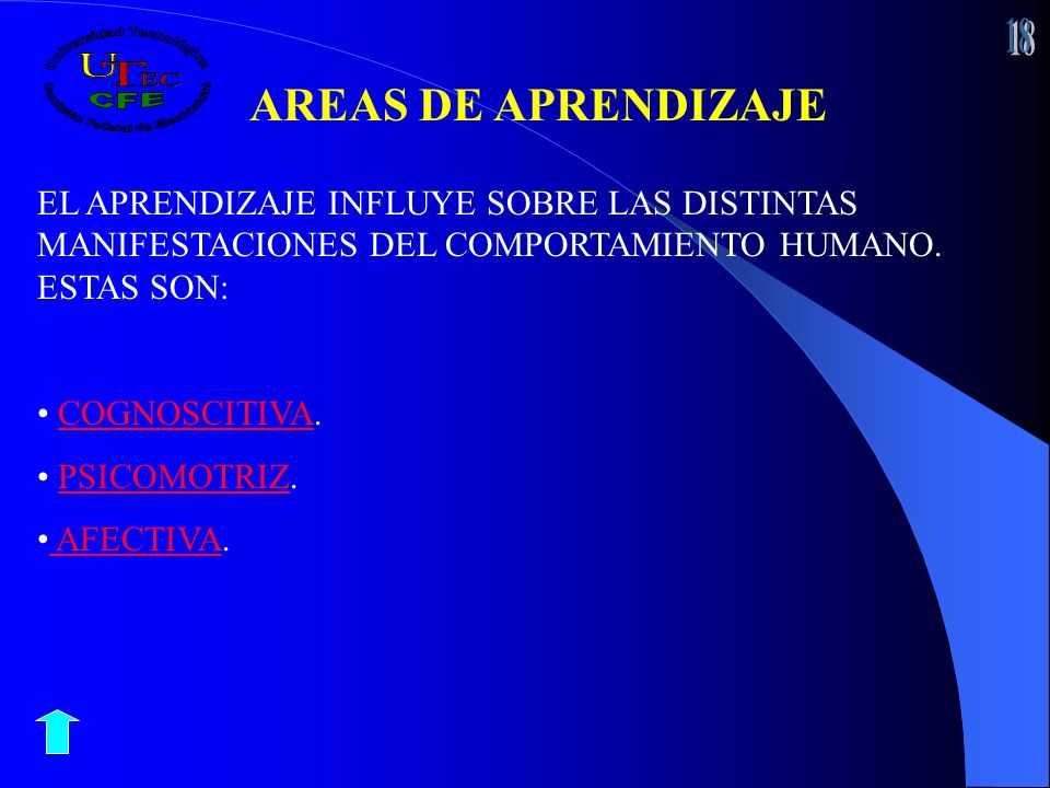 18 AREAS DE APRENDIZAJE. EL APRENDIZAJE INFLUYE SOBRE LAS DISTINTAS MANIFESTACIONES DEL COMPORTAMIENTO HUMANO. ESTAS SON: