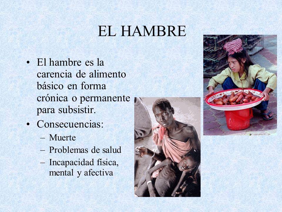 EL HAMBRE El hambre es la carencia de alimento básico en forma crónica o permanente para subsistir.