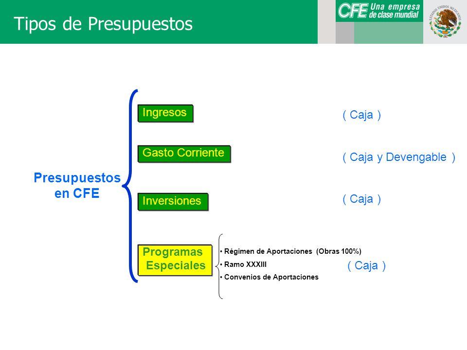 Tipos de Presupuestos Presupuestos en CFE Ingresos ( Caja )