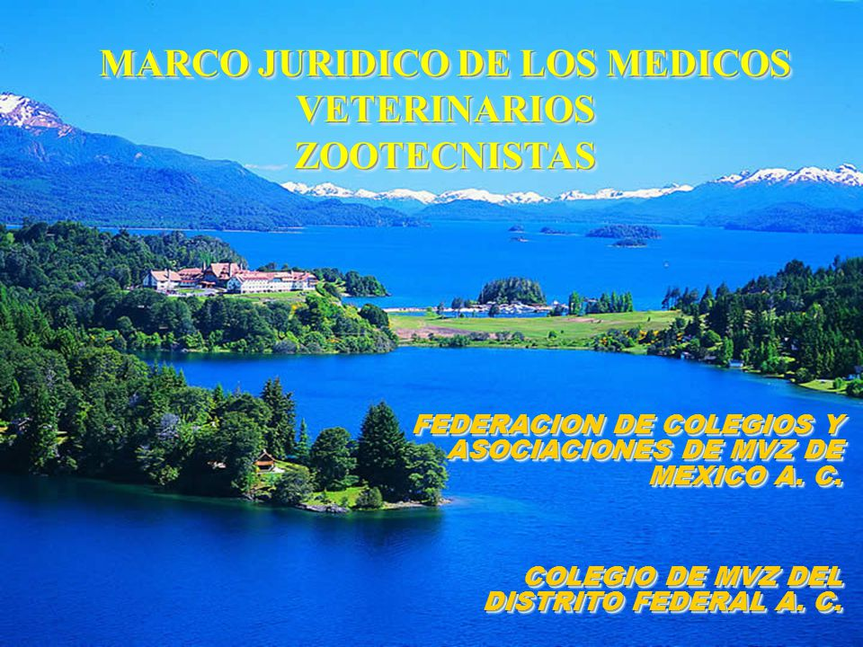 MARCO JURIDICO DE LOS MEDICOS VETERINARIOS ZOOTECNISTAS